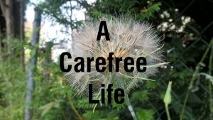 A carefree attitude 1
