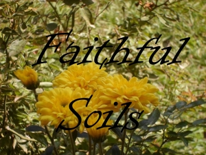 faithful soils